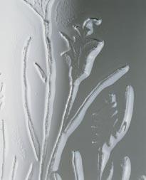 Detail Gräser